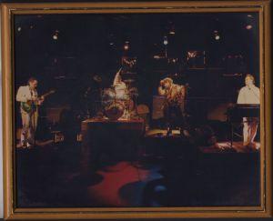 Beldone jungle band
