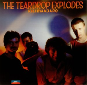 1001_Teardrop-Explodes-Kilimanjaro